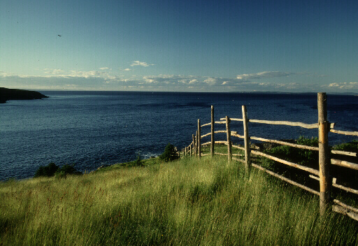 Chapel Cove Conception Bay