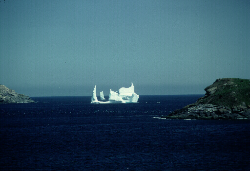 Witless Bay Iceberg